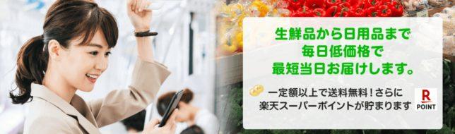 ・Rakuten SEIYUネットスーパー
